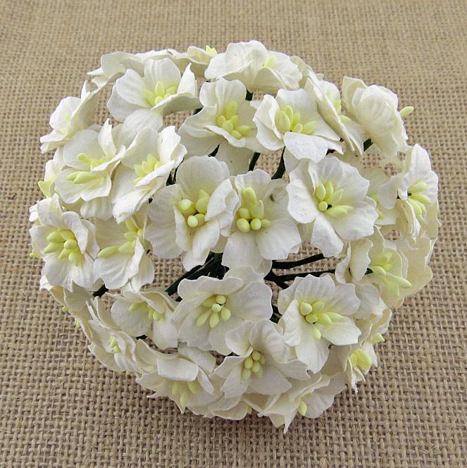 http://scrapkowo.pl/shop,kwiaty-jabloni-biale-10szt,4803.html