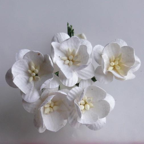 http://scrapkowo.pl/shop,kwiaty,9,0,41,0,0.html?order=3&str=9