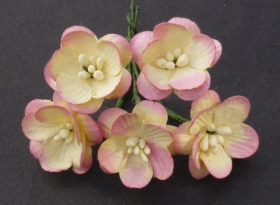 http://scrapkowo.pl/shop,kwiatuszki-dwutonowe-sweetheart-blossom-biale,4060.html