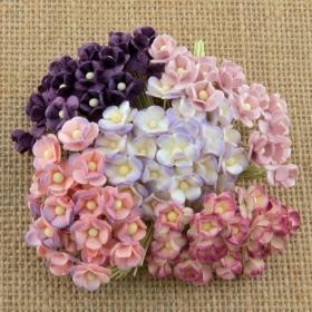 http://scrapkowo.pl/shop,kwiatuszki-sweetheart-kwiaty-bzu-ciemny-fiolet,4081.html