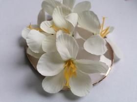 http://scrapkowo.pl/shop,kwiatuszki-sweetheart-pastelowe-jasny-zolty,4088.html