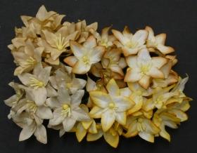 https://scrapkowo.pl/shop,kwiaty-lilie-mix-naturalne-4szt,4807.html