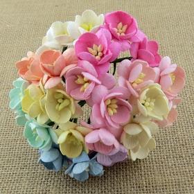 http://scrapkowo.pl/shop,kwiaty-wisni-biale-5szt,4821.html