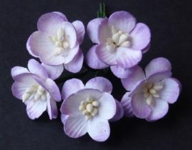 http://scrapkowo.pl/shop,kwiaty-wisni-odcienie-czerwone-10szt-1,4831.html
