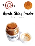 Shiny Powder 22ml (Pigment per³owy) br±z