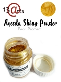 Shiny Powder 22ml (Pigment per³owy) Royal Gold Sat