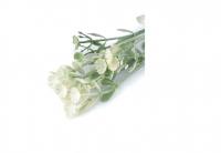 Listki/ kwiatki białe 9szt.
